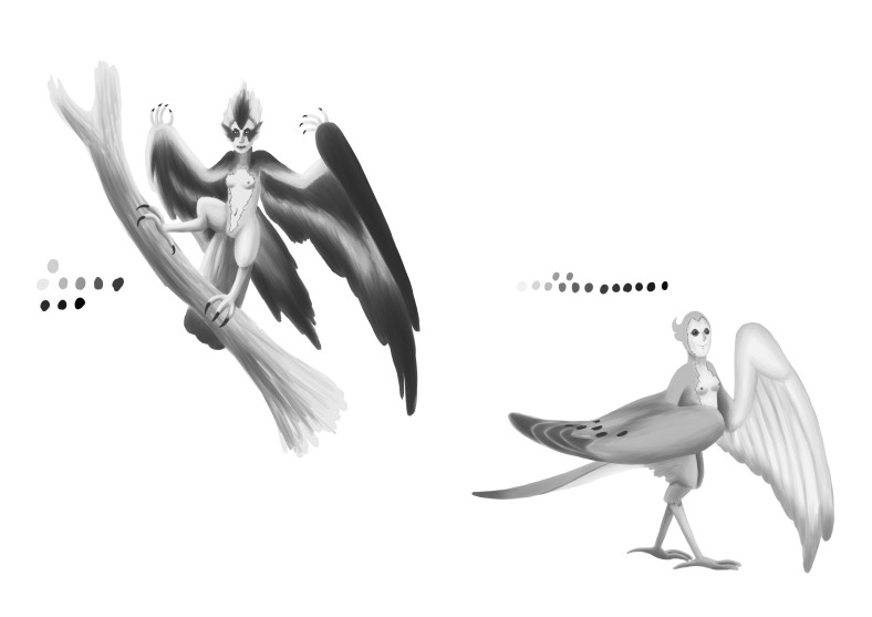 Southwick_Osprey and Mourning dove harpy_greyscale02
