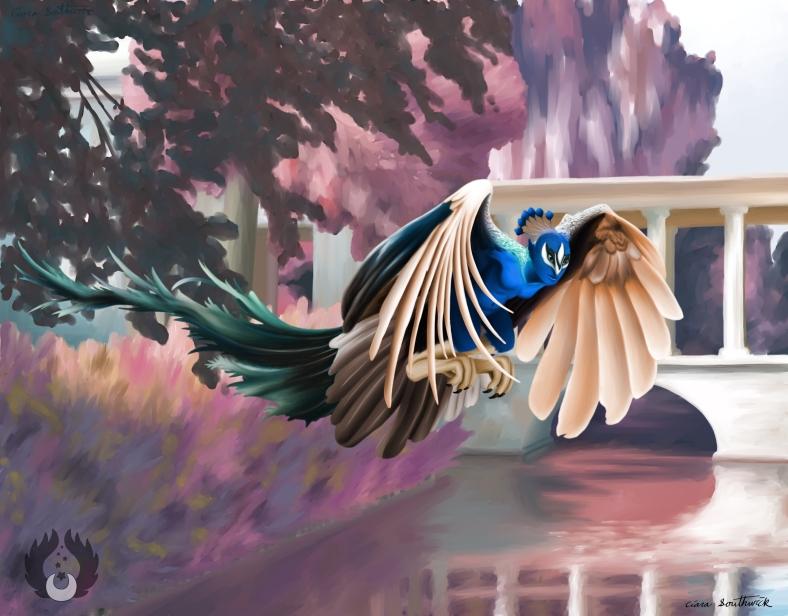 Peacock Harpy02 by Ciara Southwick